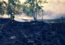 Überörtliche Hilfe, Waldbrand im Kreis Viersen